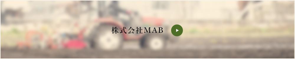 株式会社MAB